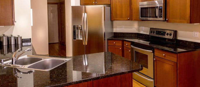 Differences Between Regular and High-End Appliances
