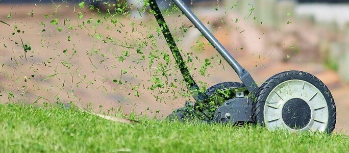 Tips for Maintaining Your Lawn During the Summer