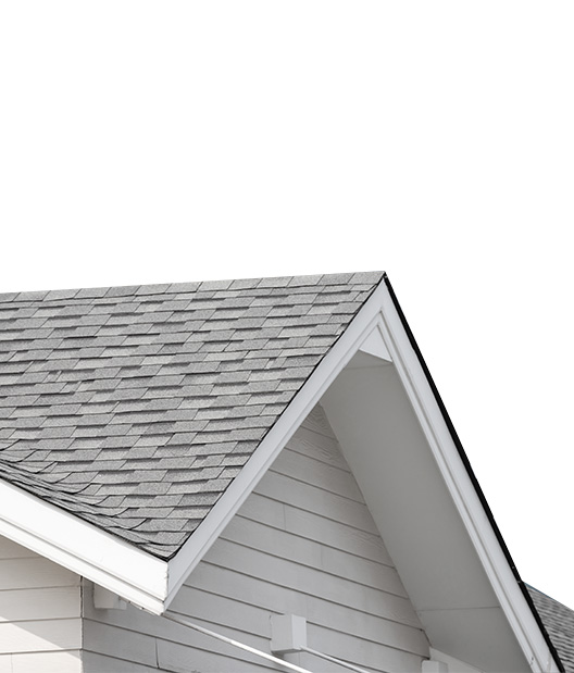 Limited Roof Leak